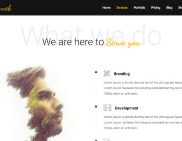 proweb-services
